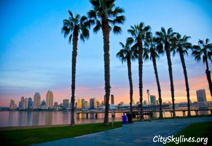 San Diego Skyline with Palm Trees