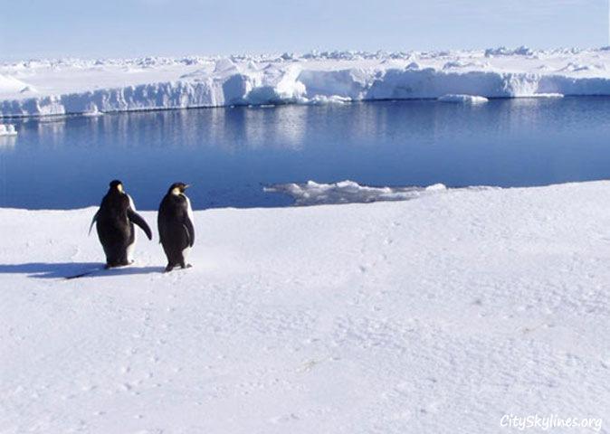Antartica Skyline